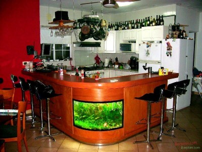 kitchen bar