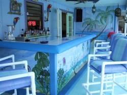 Tiki Bar Styles 2