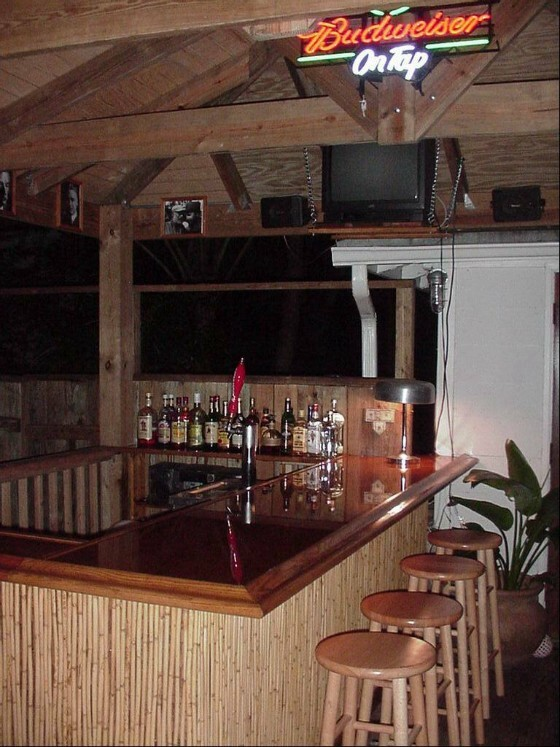 EHBP-20 Tiki Bar Hut Design | Easy Home Bar Plans