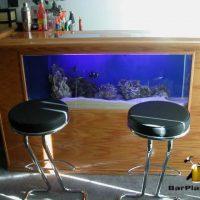 salt water fish tank bar