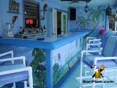 partio yard bar with painted  tropical theme